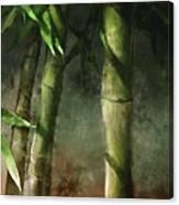 Bamboo Stalks Canvas Print
