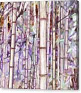 Bamboo Texture Canvas Print