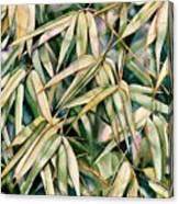 Bamboo2 Canvas Print