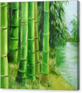 Bamboos By The River Canvas Print