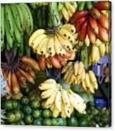 Banana Display. Canvas Print