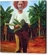 Banana Farmer Canvas Print