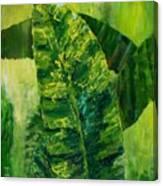 Banana Leaves II Canvas Print