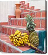 Bananas And Pineapple On Terracotta Steps Canvas Print