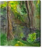 Bandera Trees Canvas Print