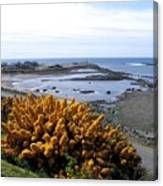 Bandon Harbor Entrance Canvas Print