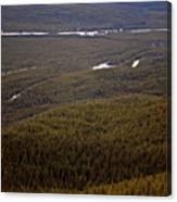 Banff National Park Forest Canvas Print