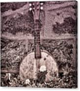 Banjo Mandolin On Garden Wall Canvas Print
