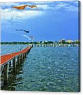 Banners Flying Canvas Print