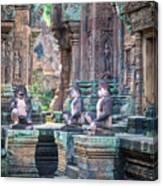 Banteay Srey Temple Pink Monkeys Canvas Print