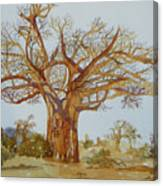 Baobab Tree Of Africa Canvas Print