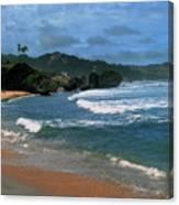 Barbados Berach Canvas Print