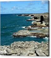 Barbados Coast Canvas Print