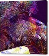 Barbary Ape Monkey Primate Animal  Canvas Print
