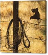 Barbed Landing Canvas Print