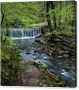 Bard Springs Canvas Print
