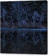 Bare Trees Reflected Canvas Print
