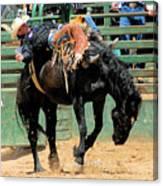Bareback Bronc Rider Canvas Print