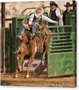Bareback Riding At The Wickenburg Senior Pro Rodeo Canvas Print