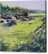 Barley Harvest Canvas Print
