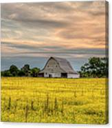 Barm In A Yellow Field Canvas Print