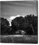 Barn And Palmetto-bw Canvas Print