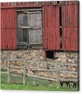 Barn And Sheep Canvas Print