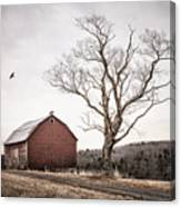 barn and tree - New York State Canvas Print