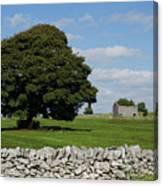 Barn And Tree Canvas Print