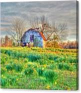 Barn In Field Of Flowers Canvas Print