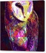 Barn Owl Bird British Nature  Canvas Print