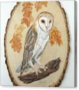 Barn Owl - Enduring Insight Canvas Print