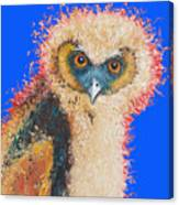 Barn Owl Painting Canvas Print