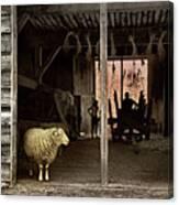 Barn Stock Canvas Print