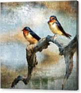 Barn Swallows Oil Canvas Print