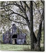 Barn Underneath The Tree Canvas Print