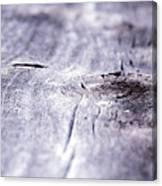 Barn Wood Abstract Canvas Print