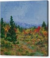 Barnardsville Branch Canvas Print