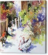 Barnyard Gathering Canvas Print