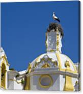 Baroque Church And Storks Nest Canvas Print