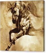 Baroque Horse Series IIi-i Canvas Print