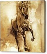 Baroque Horse Series IIi-ii Canvas Print