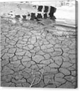 Barren Dry Land Canvas Print