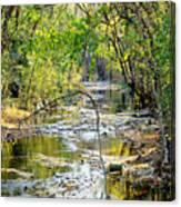 Barren Fork Creek Canvas Print
