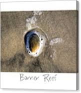 Barrier Reef Canvas Print
