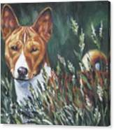 Basenji In Grass Canvas Print