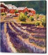 Lavender Smell Canvas Print