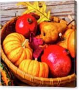 Basket Full Of Autumn Canvas Print
