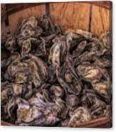 Basket Full Of Oysters Canvas Print
