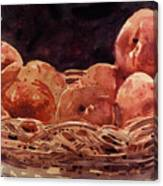 Basket Of Peaches Canvas Print